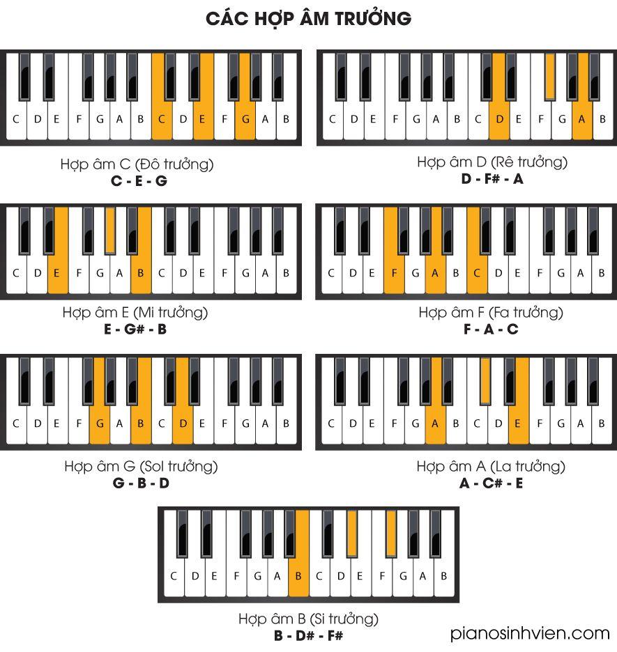 7 hợp âm trưởng cơ bản trong Piano