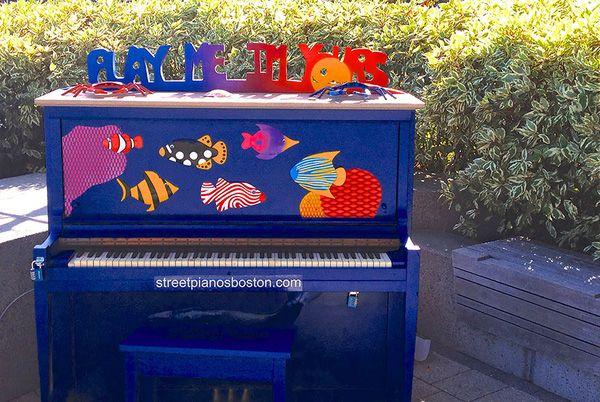 Độc đáo những chiếc đàn piano sắc màu giữa thành thị 22