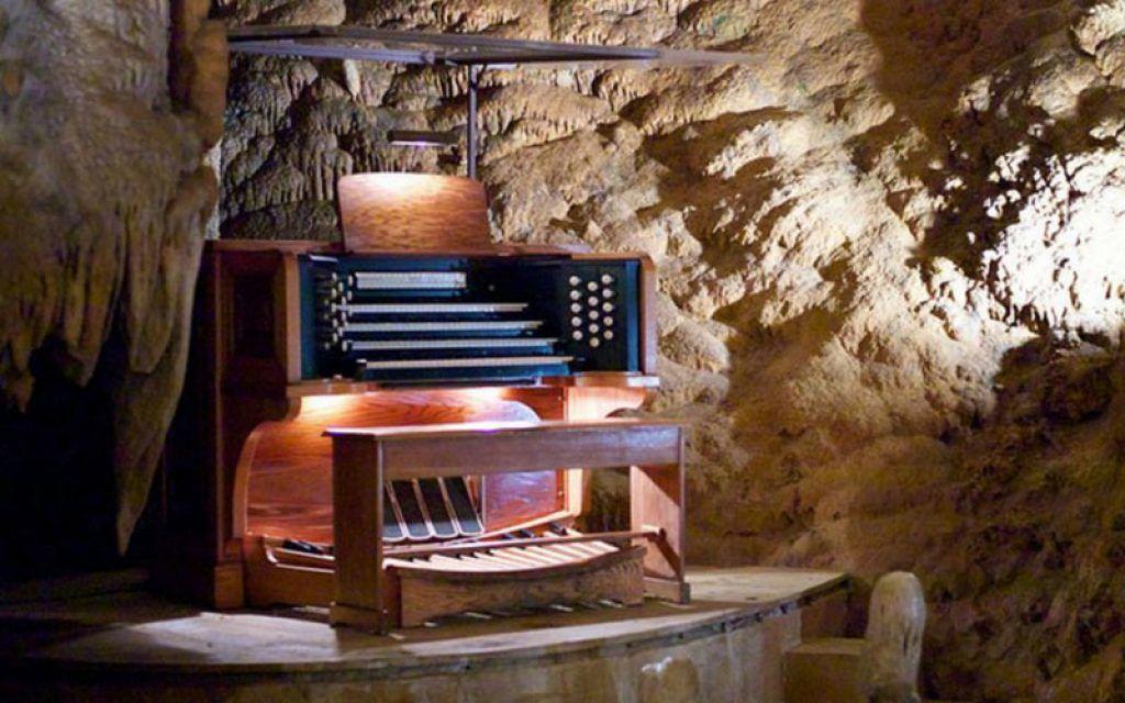 Những nhạc cụ kỳ lạ nhất thế giới ảnh 2