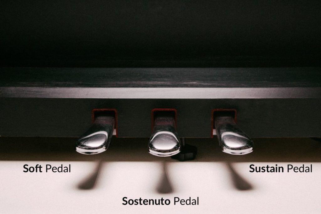 Pedal đàn piano dùng để làm gì ảnh 7