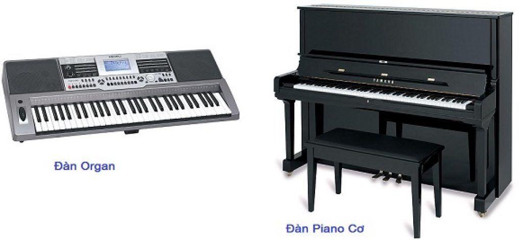 So sánh đàn organ và đàn piano ảnh 3