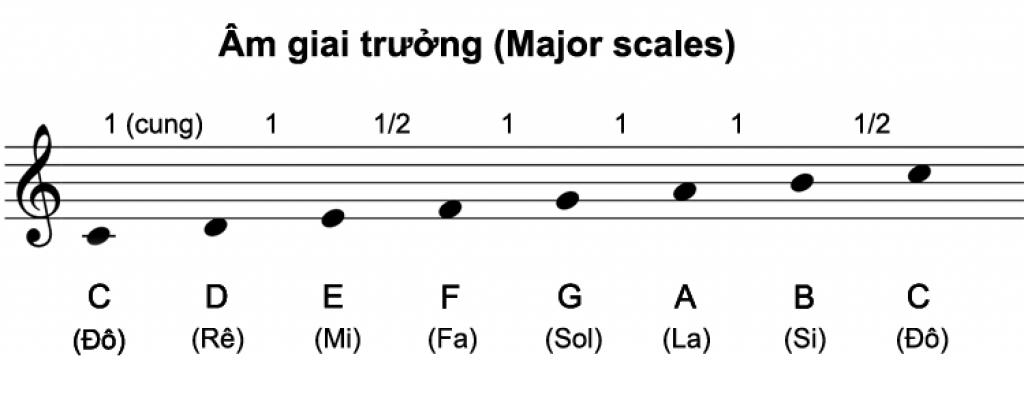 Cách thiết lập âm giai cơ bản ảnh 11