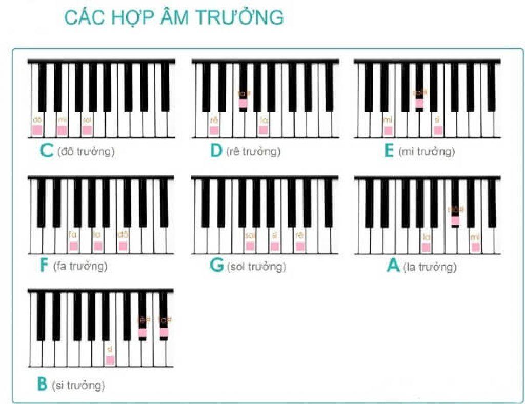 Hướng dẫn luyện ngón đàn piano cơ bản ảnh 3