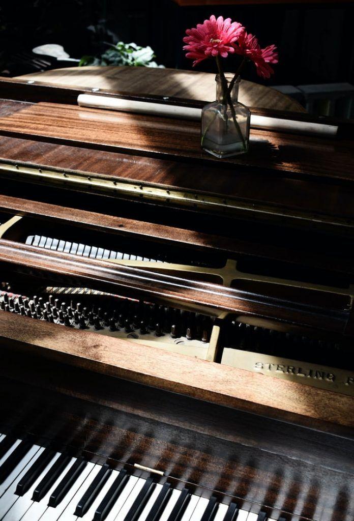 Những tips hữu ích cho việc tự học piano có thể bạn chưa biết ảnh 2