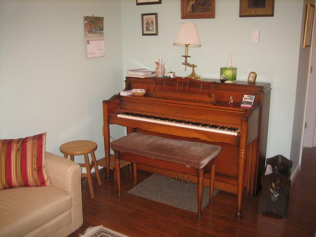 Hướng dẫn bảo quản đàn piano vào mùa mưa ảnh 1