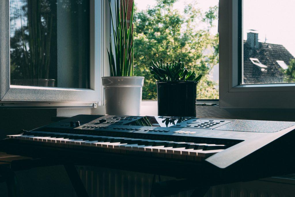Âm nhạc có ảnh hưởng như thế nào đối với thực vật ảnh 2