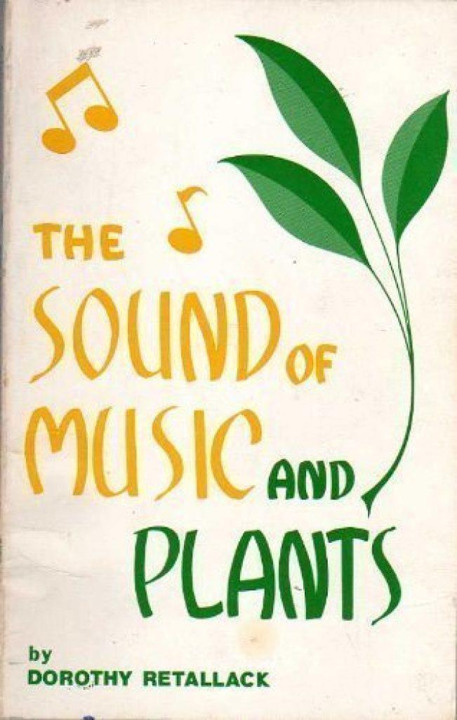Âm nhạc có ảnh hưởng như thế nào đối với thực vật ảnh 3